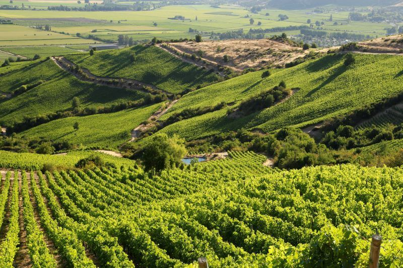 World's Best Vineyards 2020